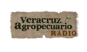 veracruz agropecuario radio